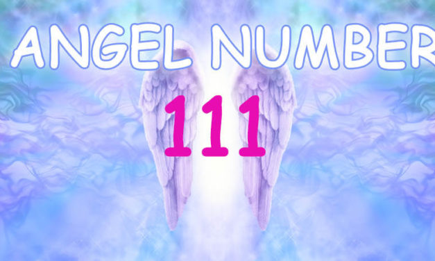 Angel Number 555 Love