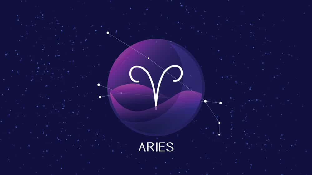aries man signs